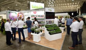 Modular exhibition stand hire - Farplants